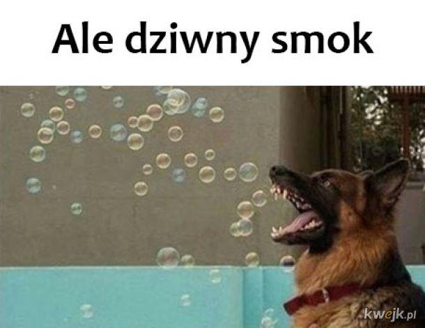 Dziwny smok