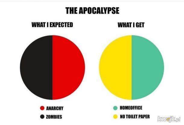 Oczekiwania vs. Rzeczywistość