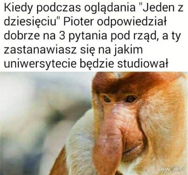 Boże chroń Janusza od zachorowania na koronawirusa, obrazek 10