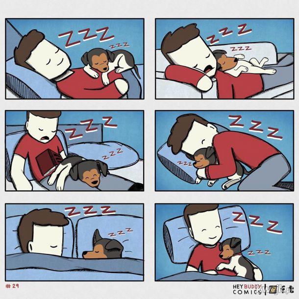 Oto komiksy zainspirowane przez psa, z którymi może się utożsamiać większość właścicieli psów, obrazek 10