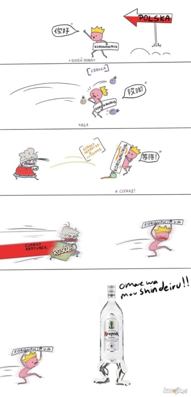 Korona vs krupnik