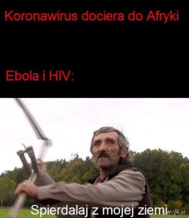 Afryka już ma swoje wirusy