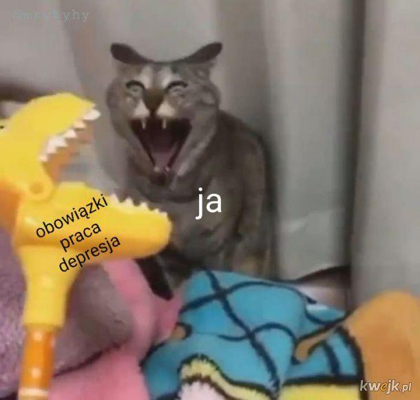 Aaaaaaaaaa