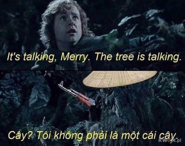 Gadające drzewa