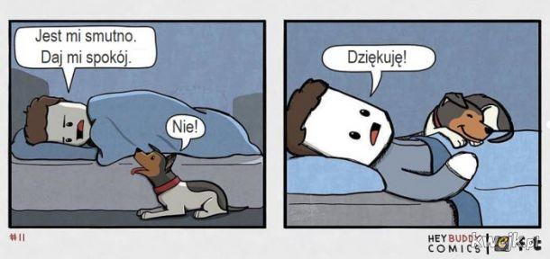 Oto komiksy zainspirowane przez psa, z którymi może się utożsamiać większość właścicieli psów