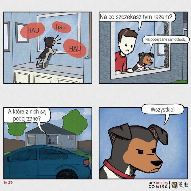 Oto komiksy zainspirowane przez psa, z którymi może się utożsamiać większość właścicieli psów, obrazek 13