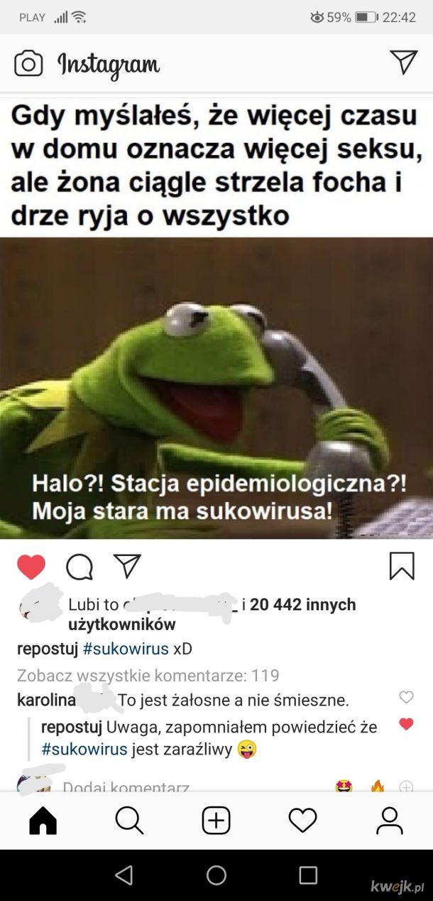 Sukowirus