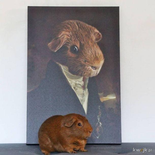 Zwierzęta i ich portrety królewskie, obrazek 3
