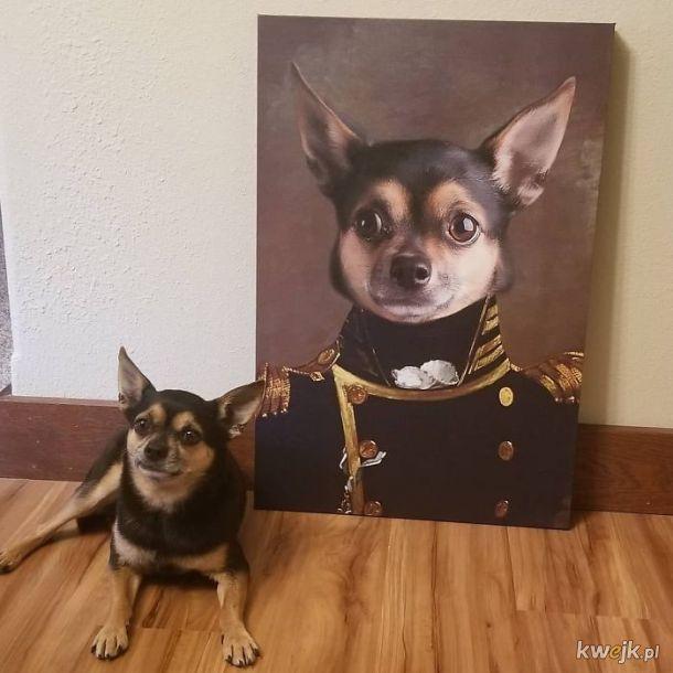 Zwierzęta i ich portrety królewskie, obrazek 2