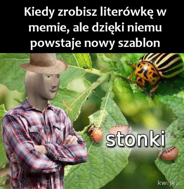 Nowy mem