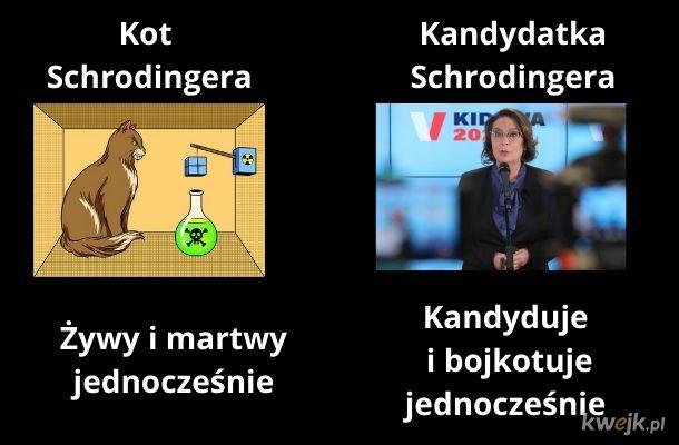 Kandydatka Schrodingera