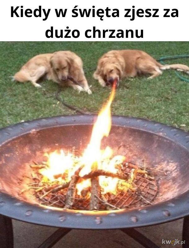 Chrzan