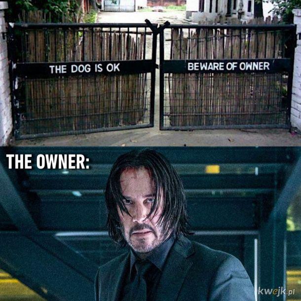 Właściciel psa