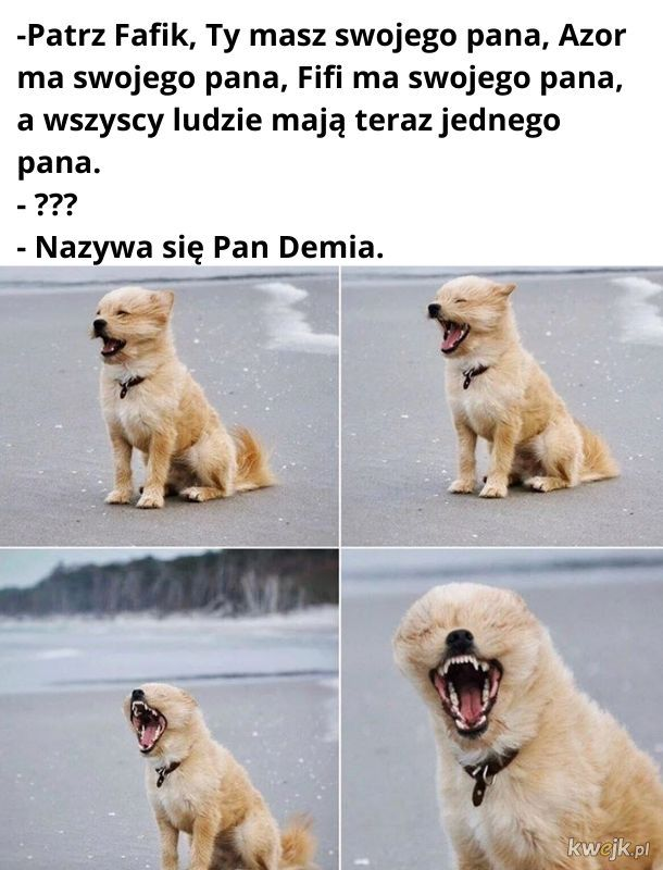 Pan Demia