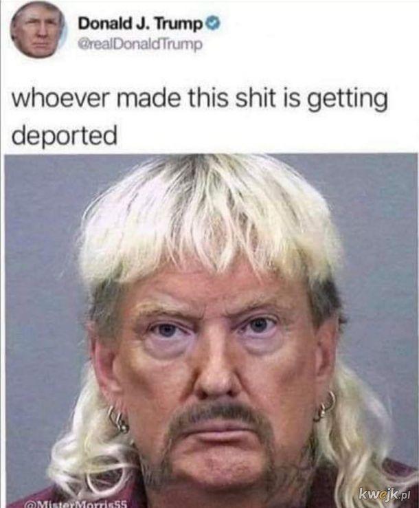I po raz kolejny Donald vs Internet