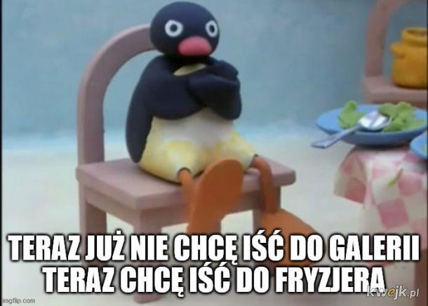 pingwin do fryzjera