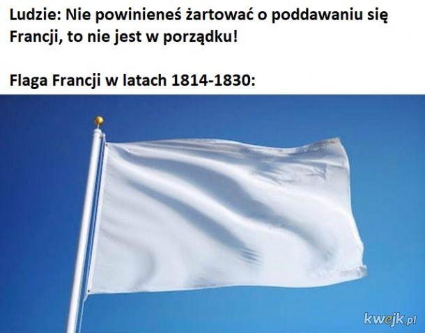 Flaga Francji w latach 1814-1830