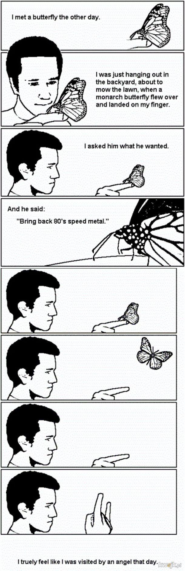 Ach powiedz mi motylku