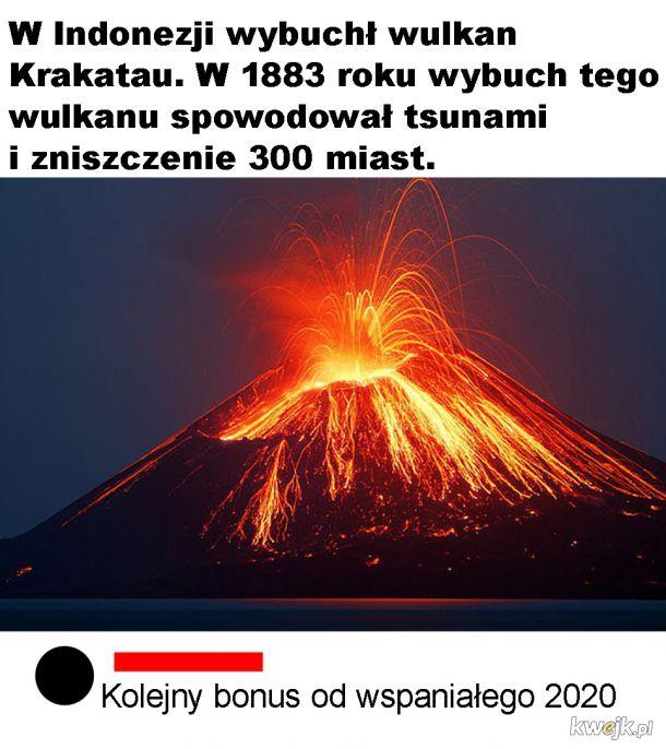 Bonusik
