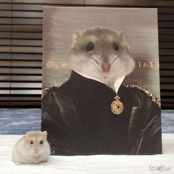 Zwierzęta i ich portrety królewskie, obrazek 6
