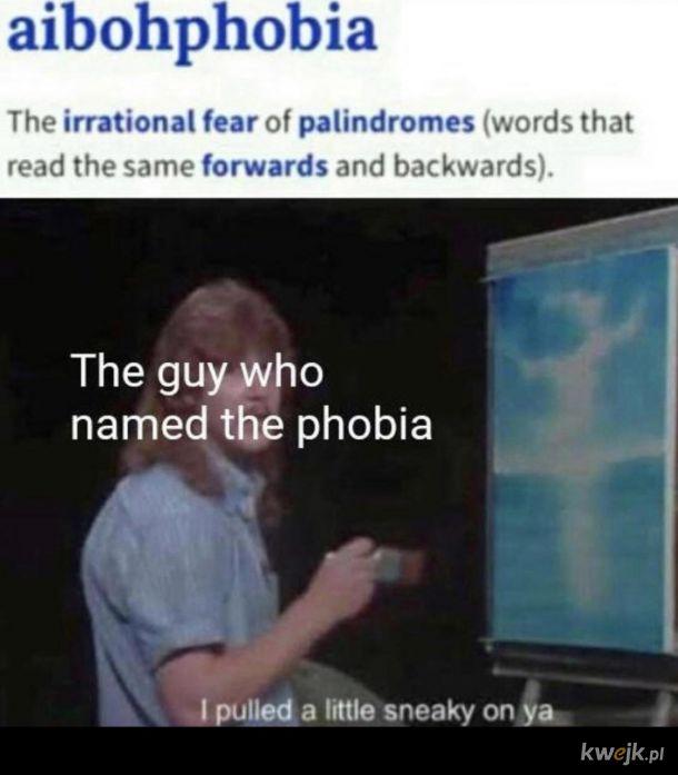 Aibofobia