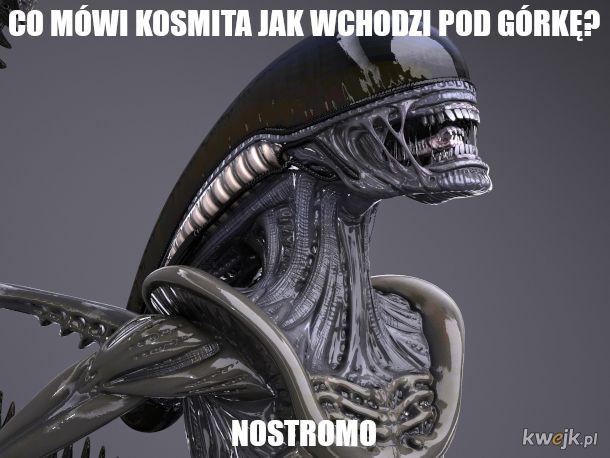 Alien: sucho jak w puszczy