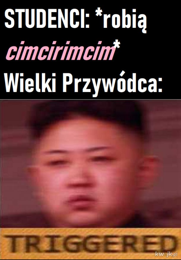Zdrada stanu według Kima
