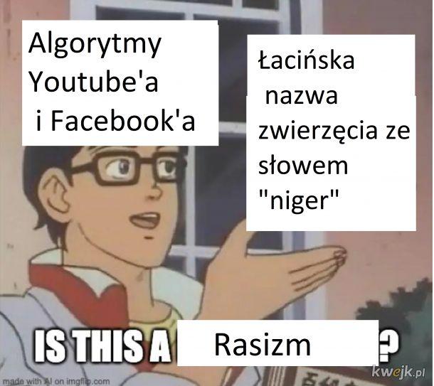 Algorytmy takie są