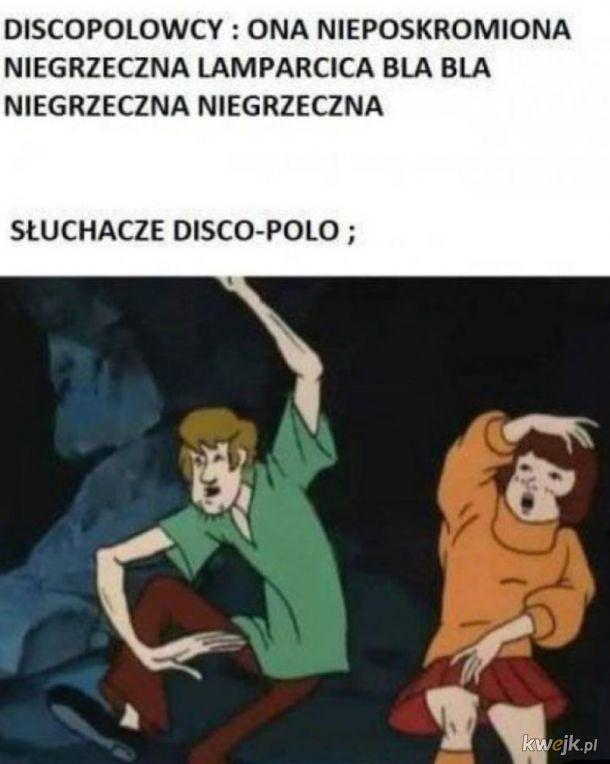 Nienawiść do disco polo tak zostałem wychowany