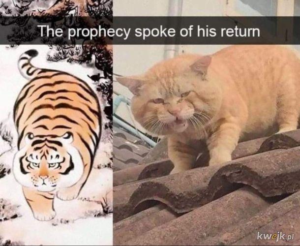 Proroctwo mówiło o jego powrocie