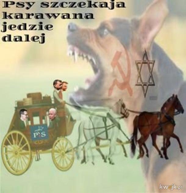 Psy szczekają karawana jedzie dalej