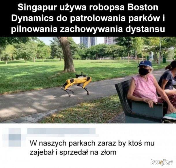 W Polsce by to nie przeszło
