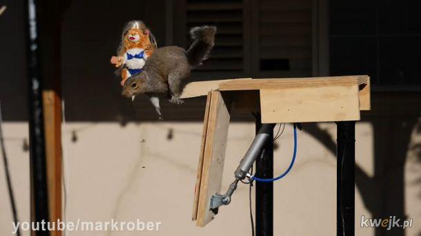 Postrach wiewiórek!, obrazek 19