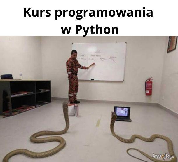 Wąż rzeczny jest teraz nieco lepszy