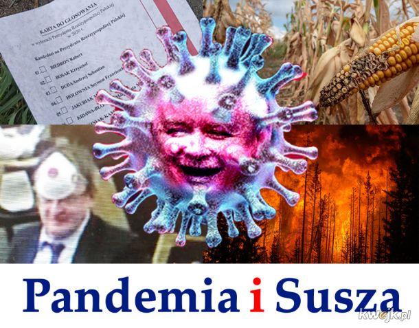 Pandemia i Susza