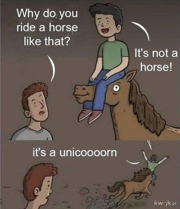 To nie jest koń!