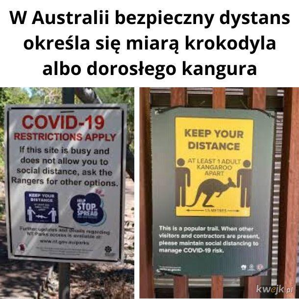 Najbardziej australijska rzecz dzisiaj