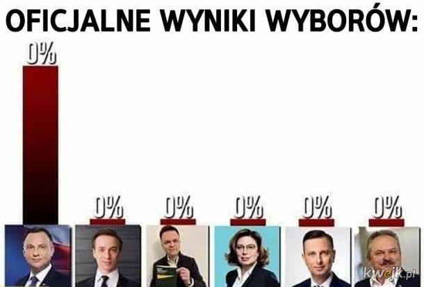 Wyniki wyborów