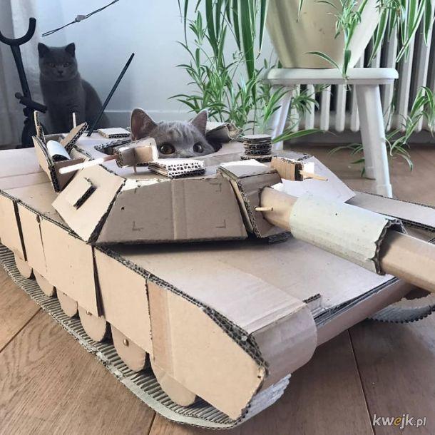 Ludziom tak się nudzi podczas kwarantanny, że budują kocie czołgi z kartonu