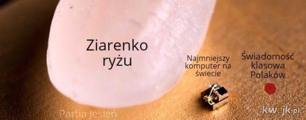 Potężna świadomość klasowa Polaków