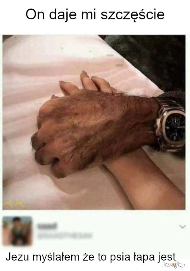To wilkołak