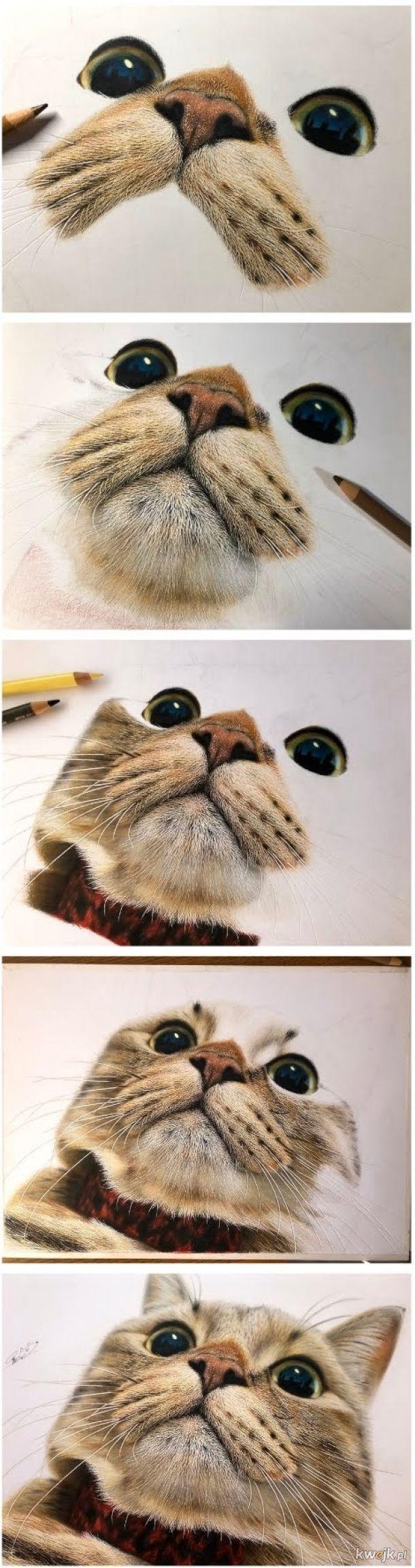 Rysowanie mema