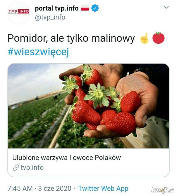 Dzięki TVP #wieszwięcej jak wygląda portugalska odmiana pomidora malinowego. Idealny do pieczenia.