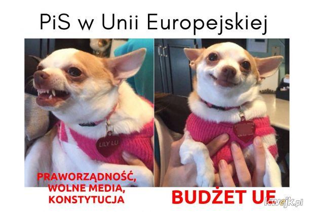 PiS w Unii Europejskiej