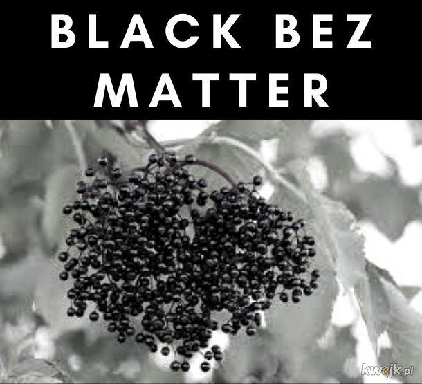 Black Bez Matter