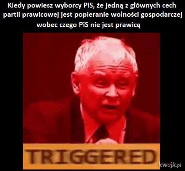 Wyborca PiS