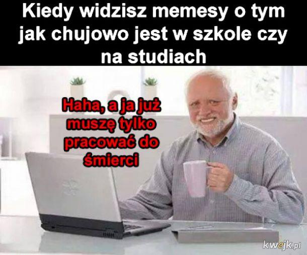 Memesy o życiu
