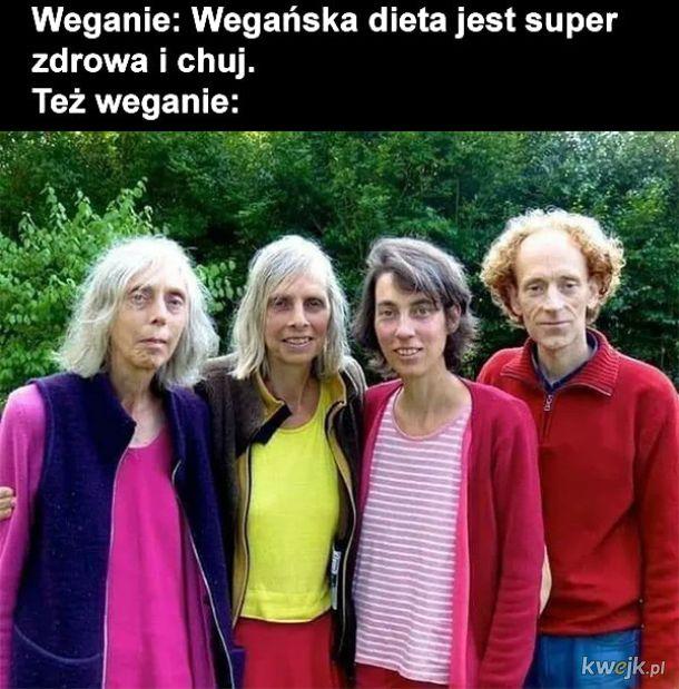 Wege dieta