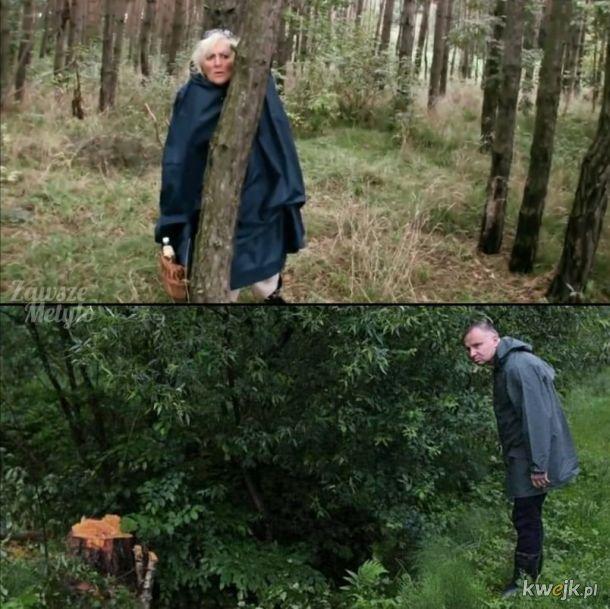 Nigdy nie wiadomo, kogo się spotka w lesie...