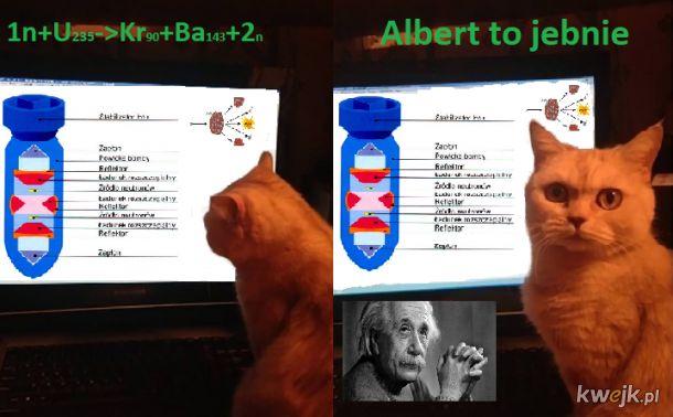 Albert to jebnie